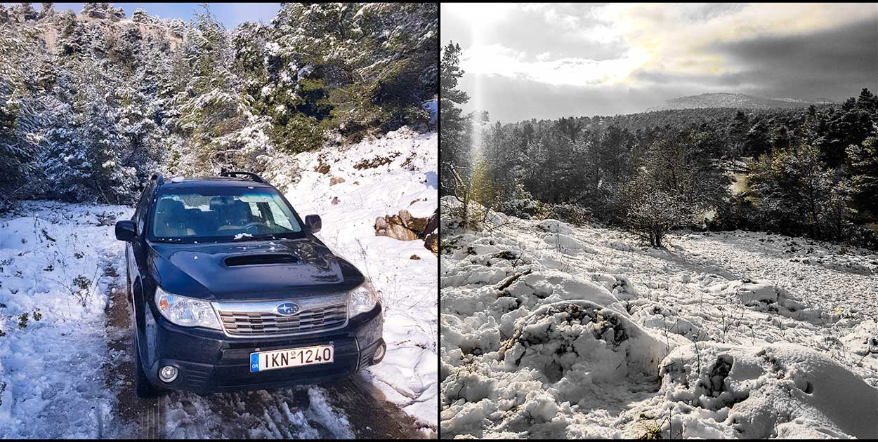 Subaru Forester snow
